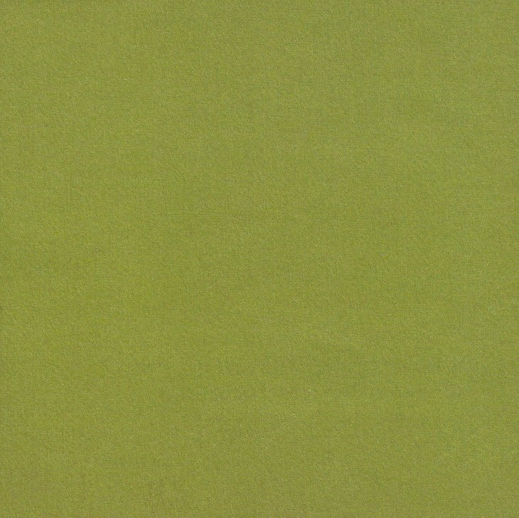 Selecting a color for a wall: Olive Green