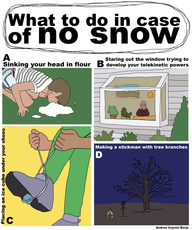 What to do in case of no snow