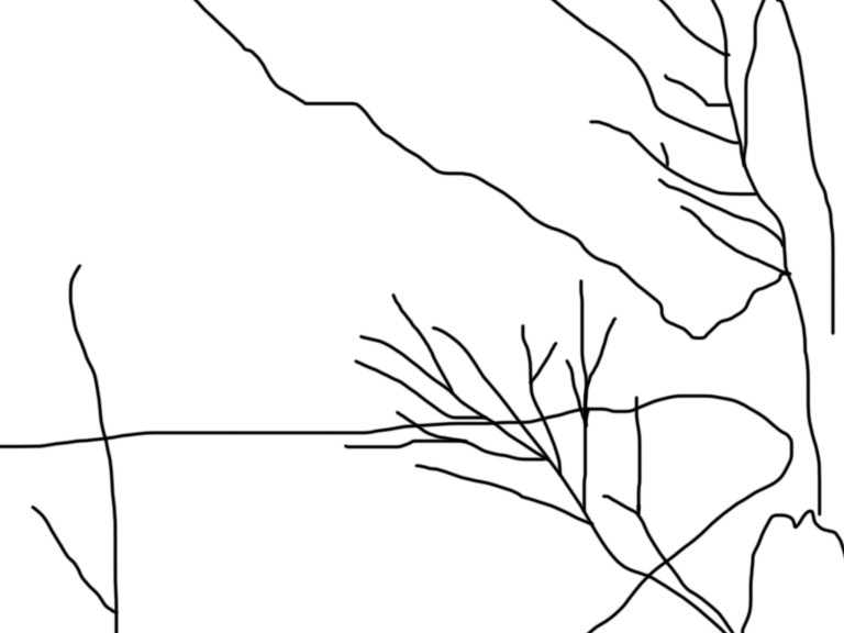 Trying to overdraw quickly a landscape