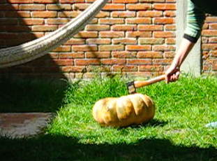 Posting a picture of me axing a pumpkin
